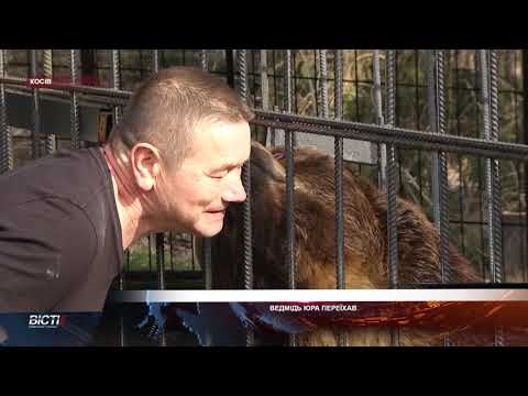 Косівський ведмідь Юра переїхав