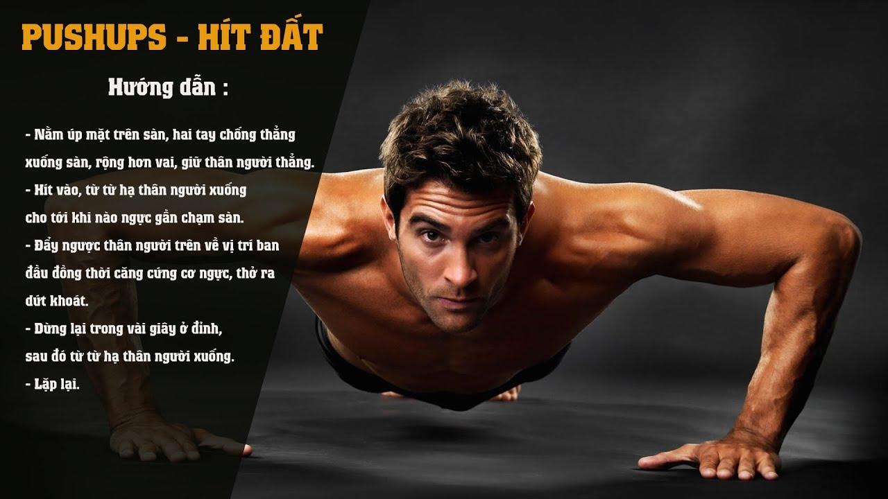 Hướng dẫn tập luyện: Bài tập cơ ngực | Bài tập Hít đất Pushups#01