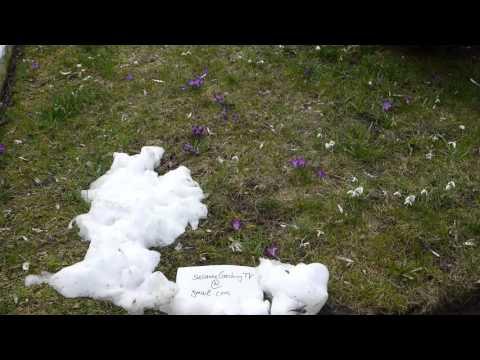 Frühlingsgefühle und Seitensprung von YouTube · Dauer:  5 Minuten 26 Sekunden