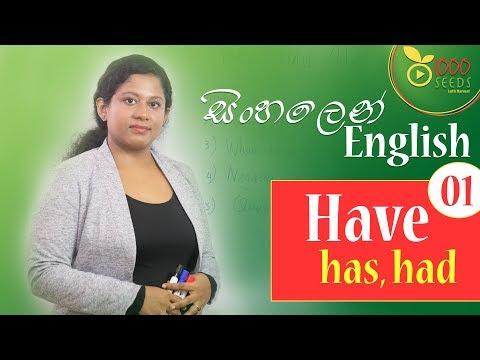 Lesson 04 - Have, Has, Had  සිංහලෙන් English - Learn English in sinhala Sri Lanka - Part 01