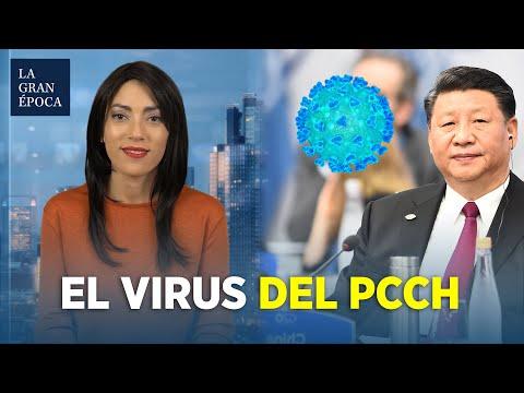 Virus del PCCh: el nombre adecuado para el virus que está causando la pandemia | Al descubierto