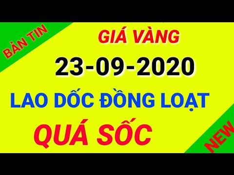 Giá vàng hôm nay ngày 23 tháng 09 năm 2020 đồng loạt giảm giá/Giá vàng 9999,SJC,18 k,24 k,14 k