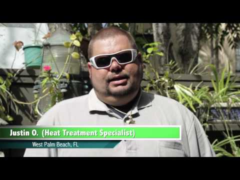 Bed Bug Treatment - Bug Free - West Palm Beach Testimonial