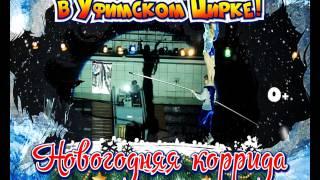 В Уфимском цирке новая программа «Новогодняя коррида»