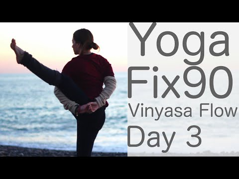 Yoga Practice Day 3: Vinyasa Flow to Bird Of Paradise: With Fightmaster Yoga
