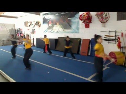 Adults Kung Fu Forms Live Streaming Free - Wushu Shaolin Kung Fu