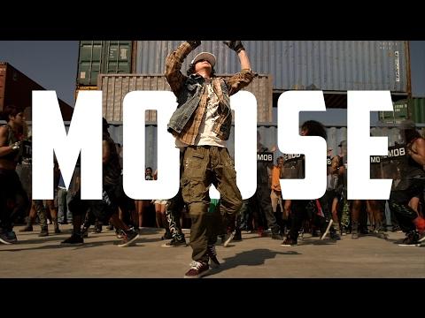STEP || MOOSE || UP