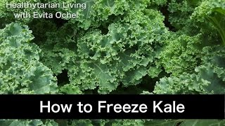 How to Freeze Kale (Guide & Tutorial)