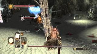 Dark Souls 2 - Lösung - Schattenwald - Gebietsboss Skorpionin Najka