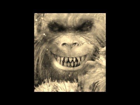 World Bigfoot Radio Episode #16, Part 2 ~ GENOSKWA RETURNS!!!