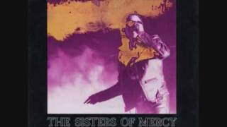 Watch Sisters Of Mercy When You Dont See Me video