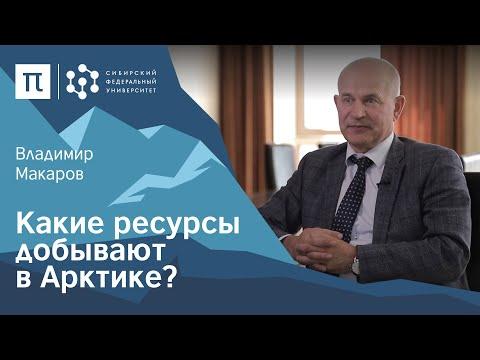 Твердые полезные ископаемые в Арктике — Владимир Макаров / ПостНаука
