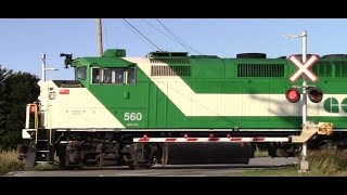 GO TRAIN COMPILATION! GO trains flying North on the CN Newmarket Sub with good and bad horns