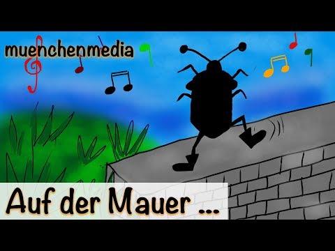 🎵 Auf der Mauer auf der Lauer sitzt ne kleine Wanze -  Kinderlieder deutsch - muenchenmedia