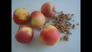 Яблочный пирог. Apfel- Walnuss- Kuchen. Маринкины творинки