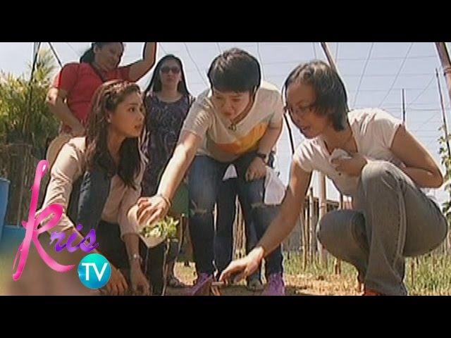 Kris TV: Kris tries grape planting