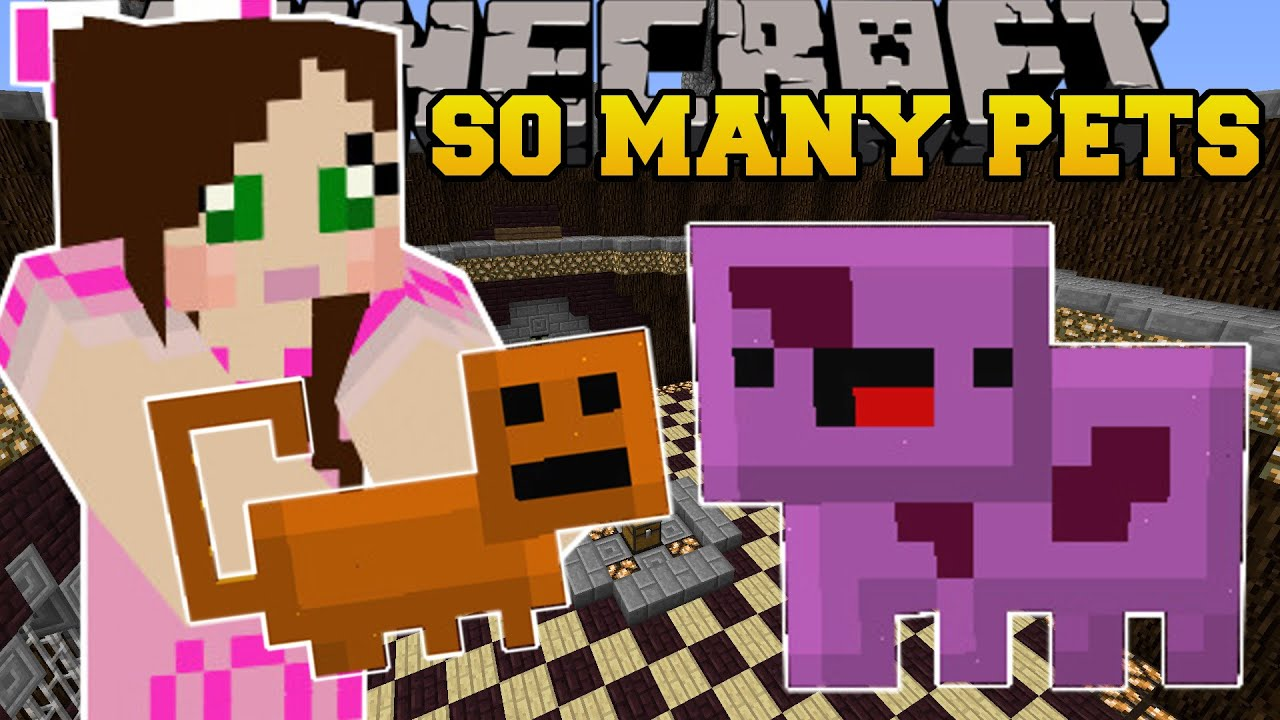 Minecraft: SO MANY PETS! (CREATE HUNDREDS OF EPIC PETS ...