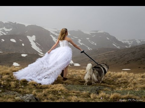 LOZANO - Zena kako ti (Official music video 2016)