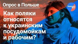 Поляки откровенно об украинских мигрантах