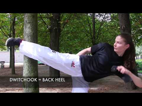 Taekwon-do Basics | Where and How to Kick? | Techniques & Execution 🥋