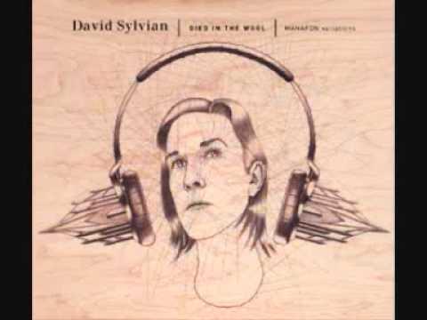 Darshan - Died In The Wool (David Sylvian)