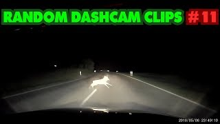 Baixar Reh angefahren & Familienausflug | Random Dashcam Clips #11 2018