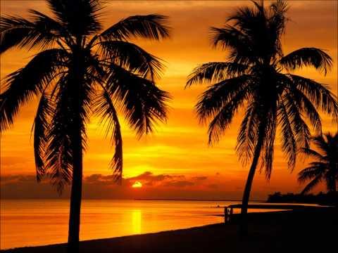 Moo - Sunset at Keywest
