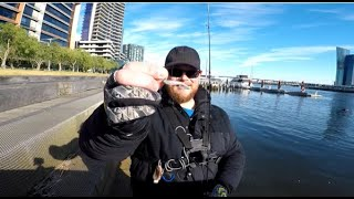 Docklands land based fishing TIPS and water drone ACTION