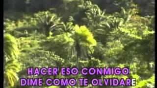 LOS IRACUNDOS - PORQUE ME HICISTE TRAMPA (Karaoke)