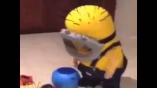 Minion kid Vine | Best Of Vine Video