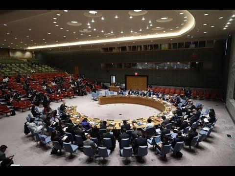 مجلس الأمن الدولي يدعو لانهاء التوترات بين إيران والولايات المتحدة  - نشر قبل 45 دقيقة