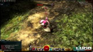 Mod Turns Guild Wars 2 Into A True Action Combat Game!