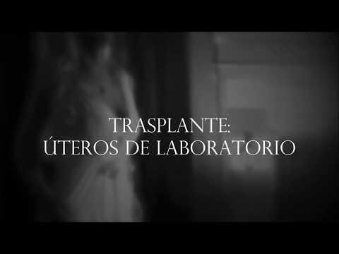 Periodista Andrea González-Villablanca y el Trasplante de Útero creado por la Bioingeniería