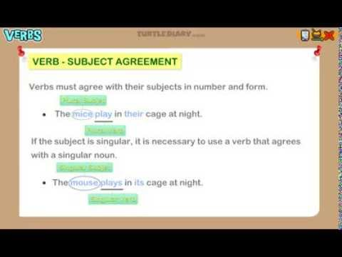 Subject Verb Agreement - Grammar Lesson for Grade 3 - YouTube