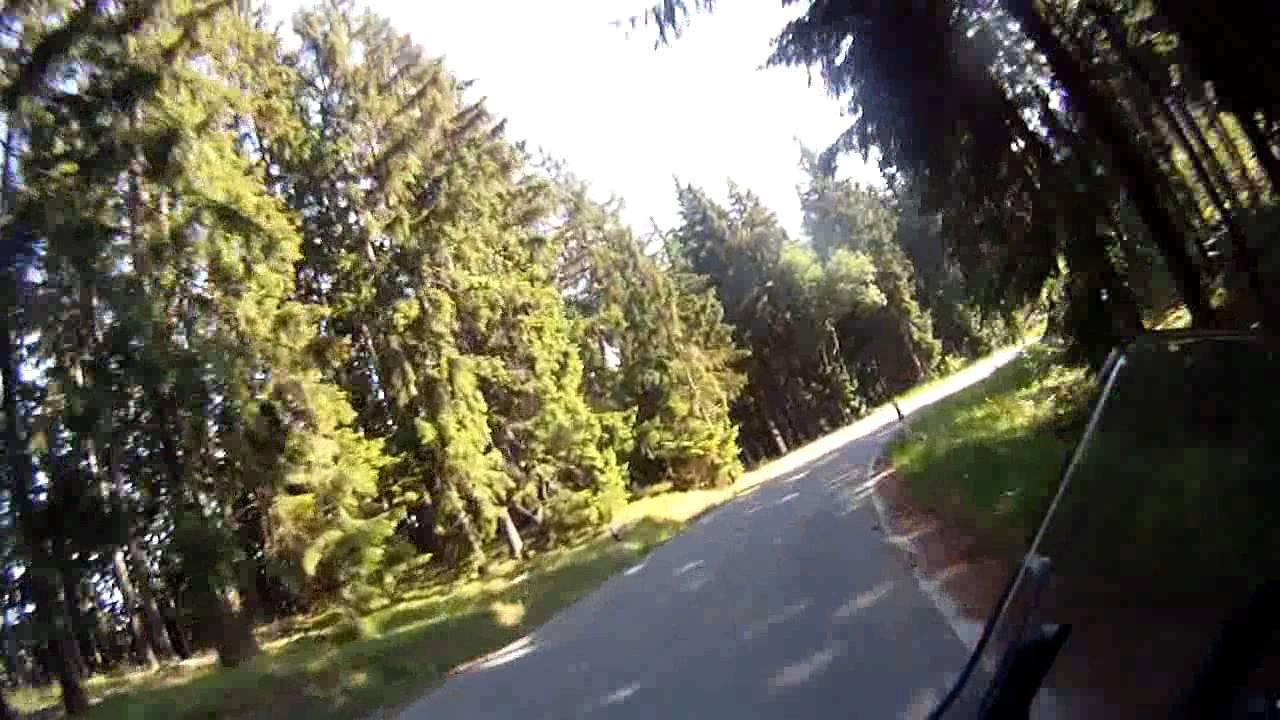 Im Wald das geile Luder genagelt