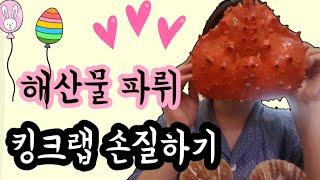 [친절한신혜]  킹크랩 손질해서 먹기! 해산물 파티~ …