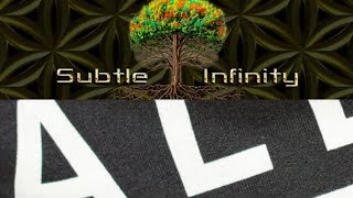 Modern Society and the Language of Synthetic Authority | AM1 & Subtle Infinity Discussion