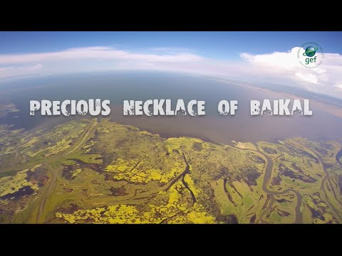 Precious Necklace Of Baikal
