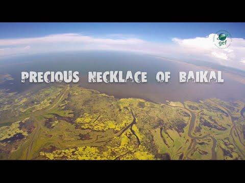 Precious Necklace Of Baikal