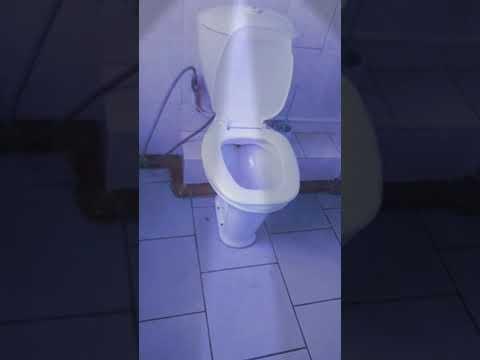 gde-nayti-tualet-s-chlenom