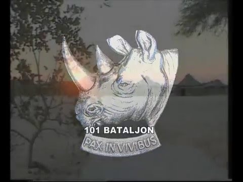 101 Battalion