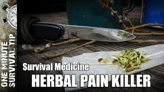 Herbal Pain Killer - one minute survival tip