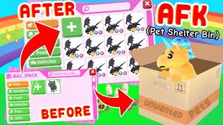 Going AFK As A *ANIMAL SHELTER BOX* for 24 Hours! Roblox Adopt Me