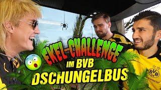 BVB: Marcel Schmelzer und Nuri Sahin im Dschungelbus mit Matze Knop