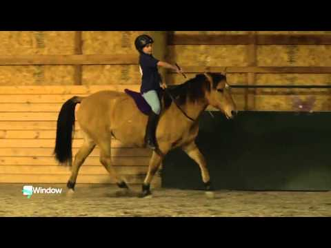 Best Kids Horse Program in the World??!!! Pony Pros in Bend, Oregon, USA!