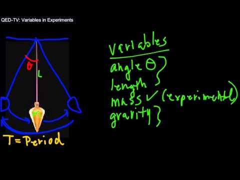 Experimental Variables