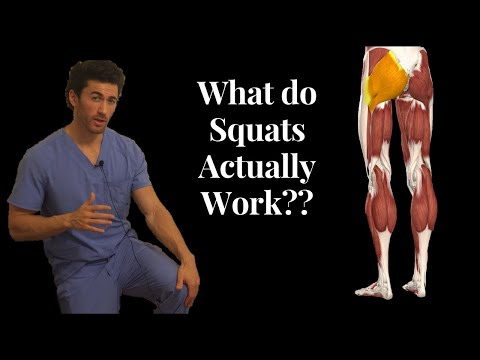 BEFORE YOU SQUAT, understand the ANATOMY behind it!