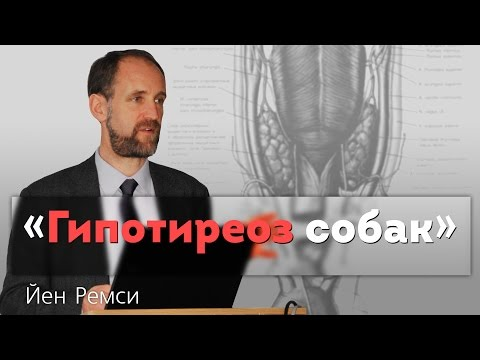 Эутиреоидный зоб узловой