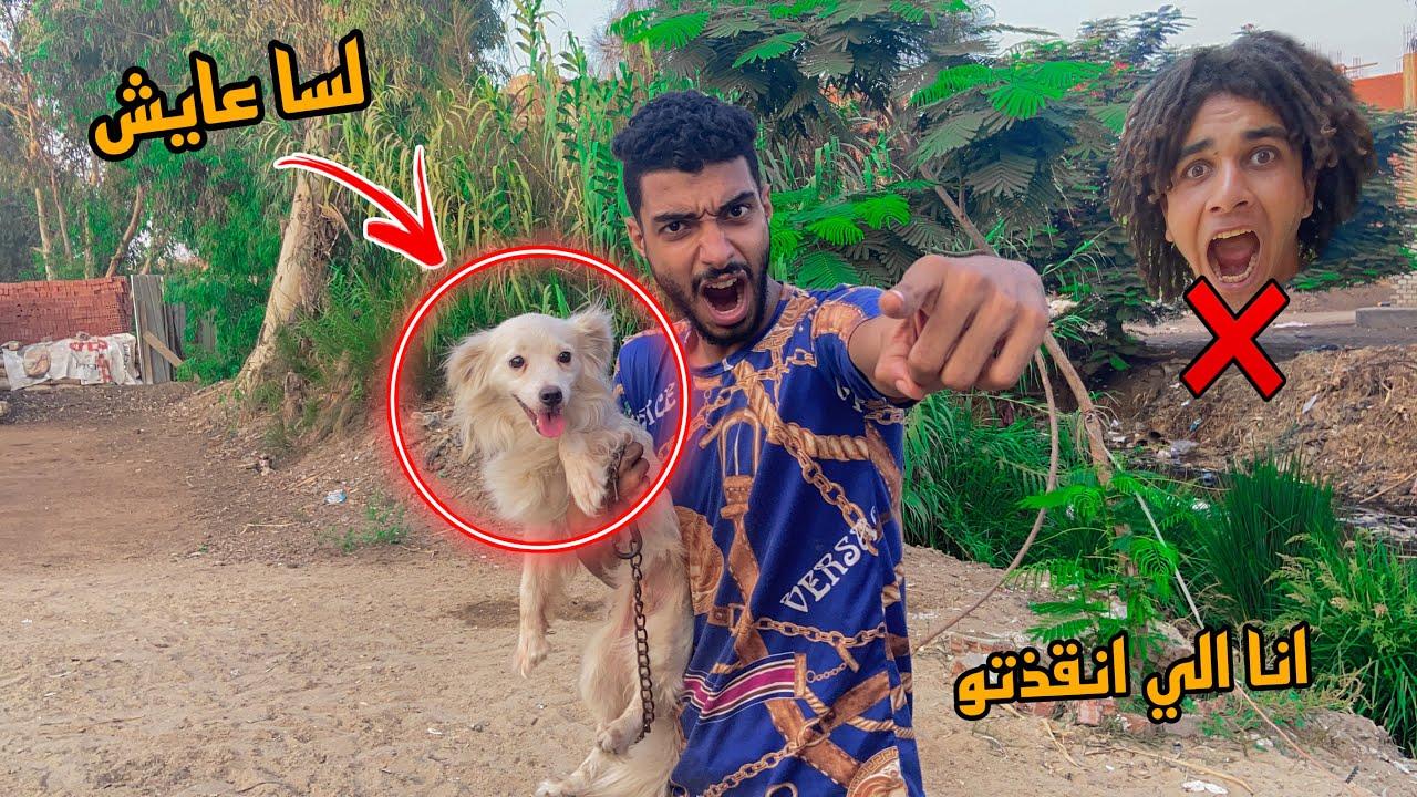 الكلب بتاع صحابي عايش ( خربوش )  ممتش ومش هتشوفو تاني بسبب ؟!