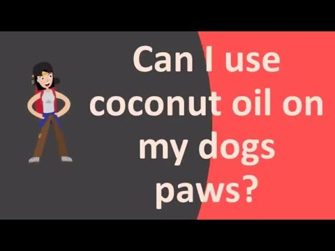 can-i-use-coconut-oil-on-my-dogs-paws-?